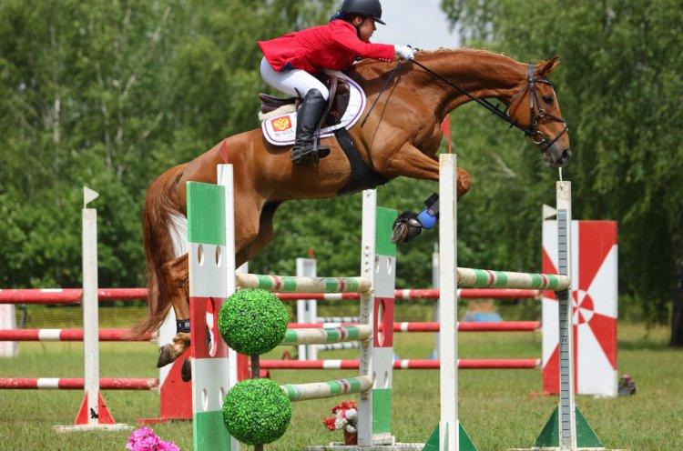 Приморская спортсменка стала седьмой на Чемпионате России по конному спорту