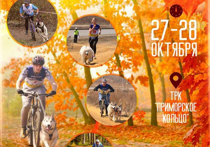 Ежегодная гонка на собачьих упряжках «Приморская осень 2018» пройдет в Артеме