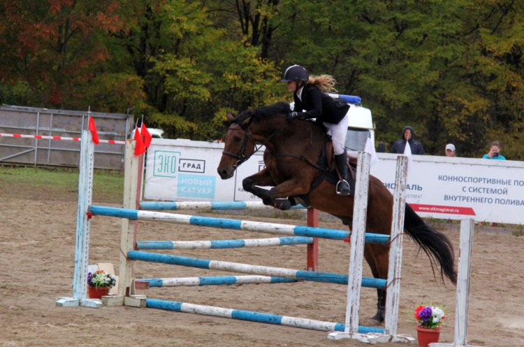 Сентябрь стал для федерации конного спорта Приморья насыщенным на события