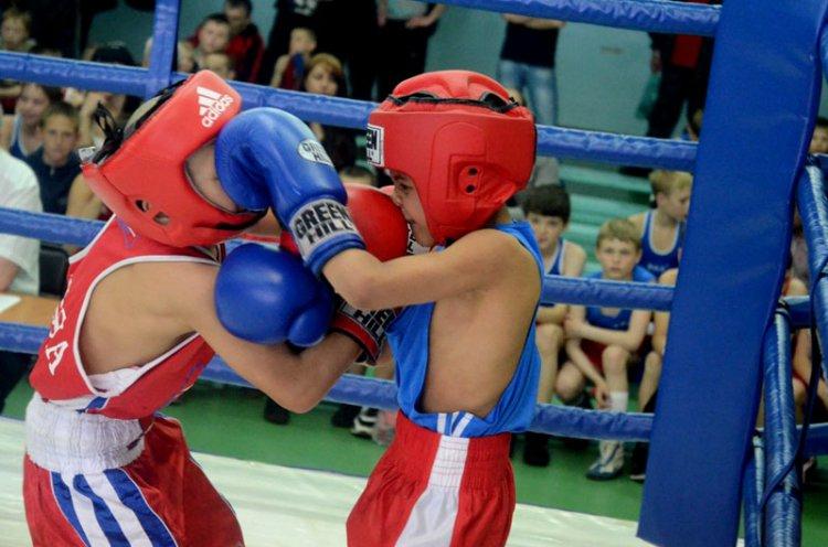 30 мая во Владивостоке стартует краевой турнир по боксу «Дети Приморья»
