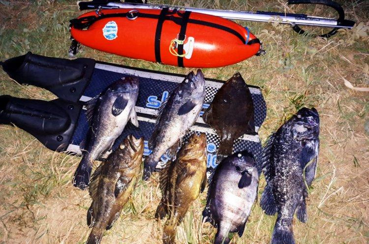 На «Праздник окуня» в рамках Кубка Приморья по подводной охоте приглашают участников и зрителей
