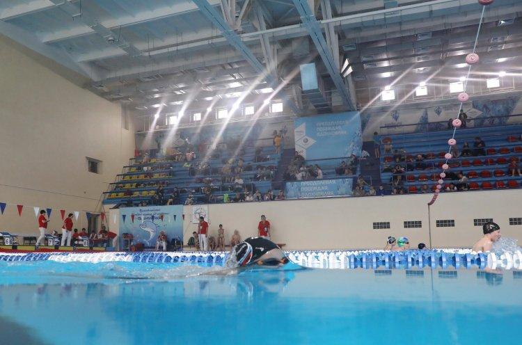 Во Владивостоке состоялись краевые соревнования по плаванию «Дельфиненок»